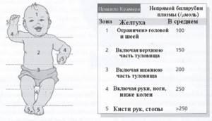 Особенности повышения билирубина у детей
