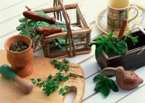 Альтернативные и дополнительные методы лечения в домашних условиях