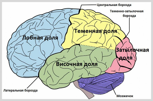Симптомы недуга в зависимости от локализации