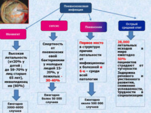Признаки и лечение пневмококковой инфекции у детей. Пневмококковая инфекция у детей