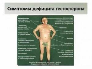 Что высокий тестостерон делает с мужчиной?