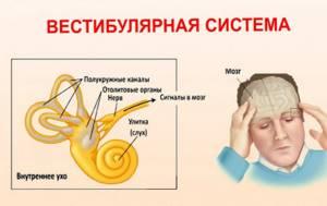 Симптомы и лечение вестибулярного головокружения у пожилых людей