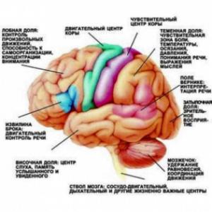 Причины повышения внутричерепного давления
